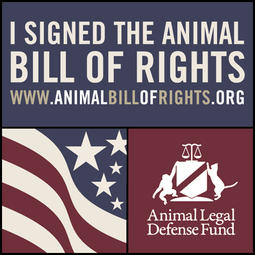 animal bill of rights Please accept my best wishes for your school project on 21st century animal torture methods it is a very interesting piece of work if you wish to genetically reanimate me, i hereby promise not to become disillusioned and confused like the savage in brave new world, and initiate a very unlikely downfall of.